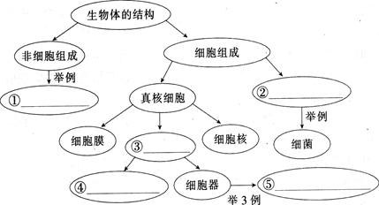 【题文】完成下列有关生物体结构的概念图.