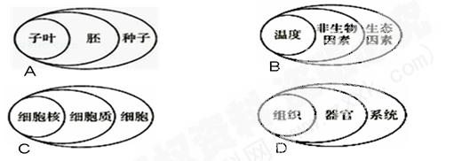 动物体的结构层次(带)