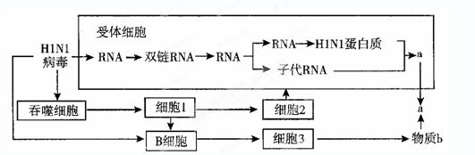 人体反应测试电路图