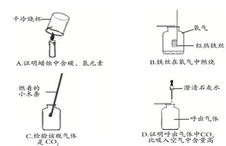 初中化学试题 实验室制取气体的思路 下列所示初中化学常见实验中,能.