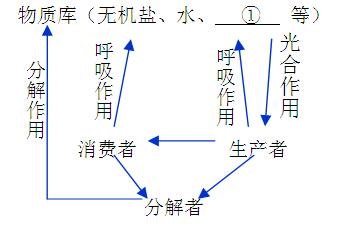 (4分)下图为生物圈中物质循环局部示意图,请回答: 题型:综合题 难度