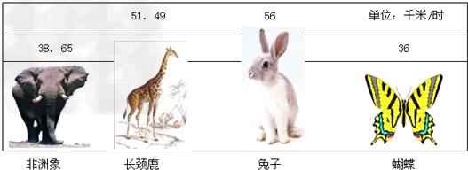 如图是非洲象,长颈鹿,兔子,蝴蝶等动物奔跑(飞行)时的最高时速统计图