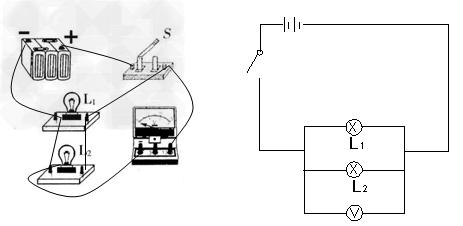 初中物理试题 电路 设计电路,要求:l1和l2并联.