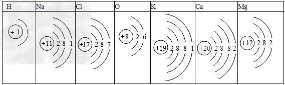 的几种元素的原子结构示意