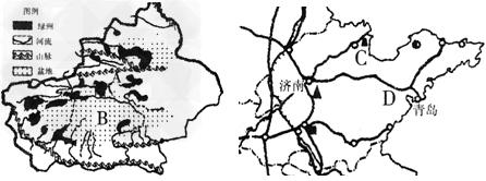 读新疆绿洲分布图和山东省地图,回答问题图片