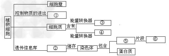 用关联词把一些相关的概念联系起来,可绘制成概念图如图.