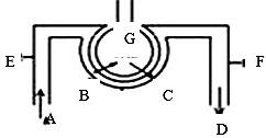 肺泡内的气体交换原理_肺泡内的气体交换过程
