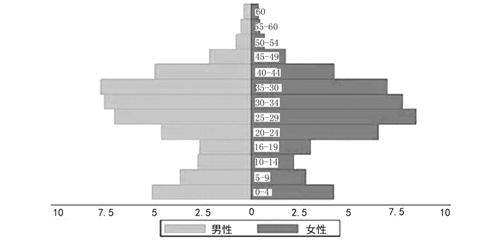 我国城市劳动人口的基本特点_世界人口分布特点